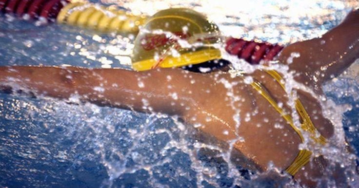 Estrutura muscular de um nadador. Todos os quatro estilos de nados – livre, costas, peito e borboleta – usam todos os grandes grupos musculares do corpo, tornando a natação um excelente e completo exercício. Os músculos do dorso (grande dorsal, trapézio e romboides), braços (bíceps, tríceps e músculos do antebraço), ombros (deltoides) e tórax (peitorais) são movimentadores ...