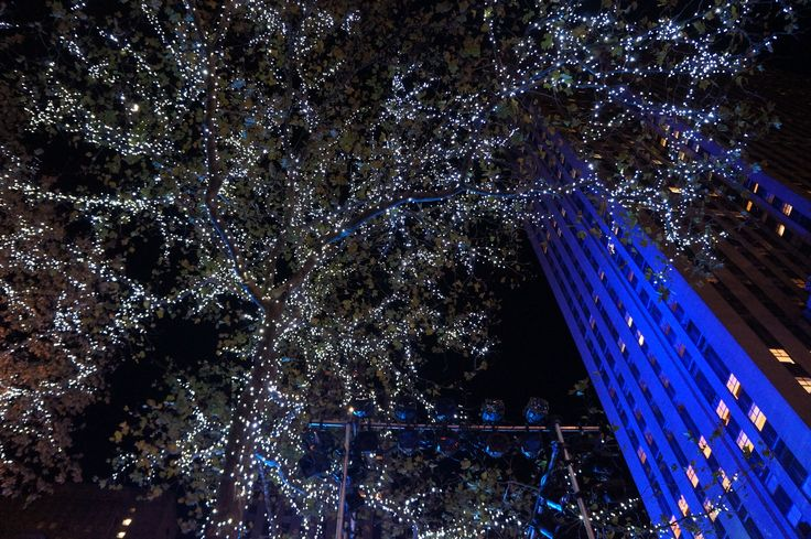 Rockefeller Center - NYC - 2012