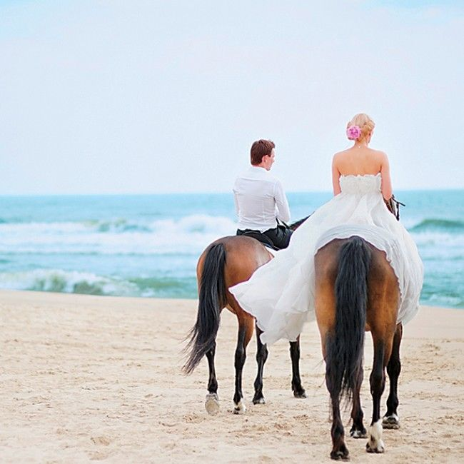 wedding-receptions-getaway-ideas-horse