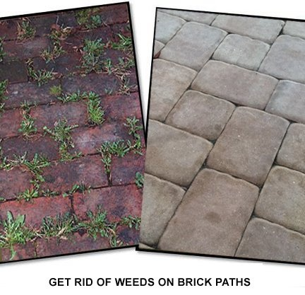 Use Baking Soda To Get Rid Of Weeds On Brick Paths. Just Sprinkle It Over  The Bricks And The Baking Soda Will Neutralize The Ph In The Soil So Nothu2026