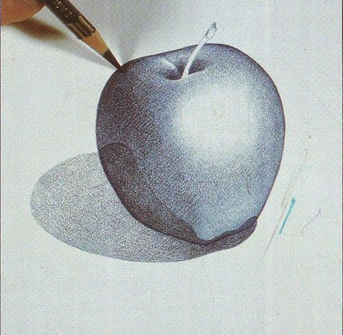 Learn to draw Apple with color pencil