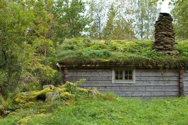 Yeşil çatılar