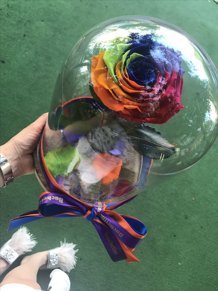 Trandafiri criogenati in clopot de sticla by Buchetino! 🌐 www.buchetino.com ☎️ 0723949413 🔑 B-dul Mircea Voda no.34