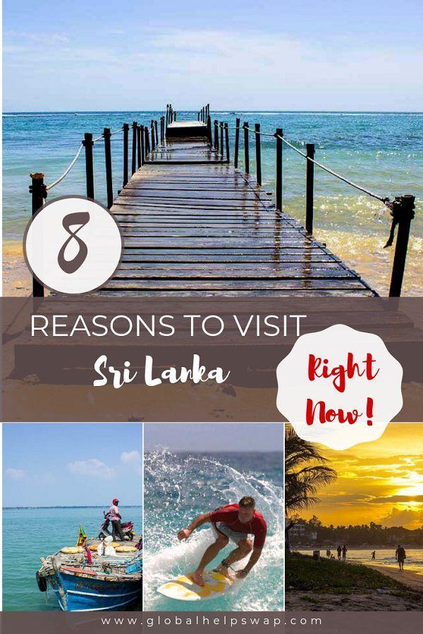 Is Sri Lanka Safe To Visit Why You Should Visit Sri Lanka Now Asia Travel Travel Destinations Asia Singapore Travel