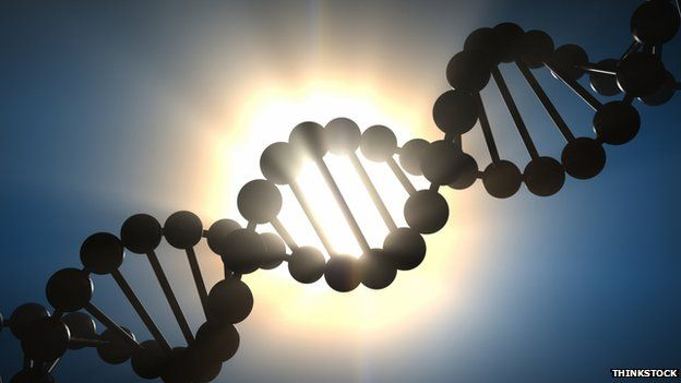 DNA project 'to make UK world genetic research leader' says BBC