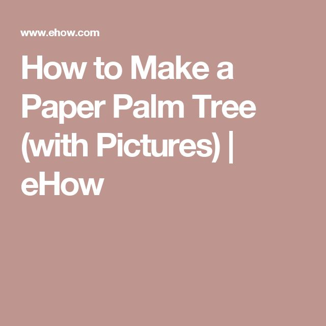 How to Make a Paper Palm Tree (with Pictures)   eHow