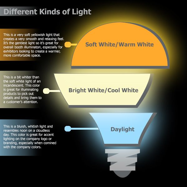 Halogen Vs Led Bulbs What You Need To Know Trade Show Display Halogen Bulbs Infographic
