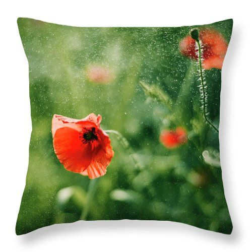 Throw Pillow featuring the photograph Poppy Sparks by Oksana Ariskina. A red poppy flower in a sparkling bokeh green sunny abstract background. Available as mugs, posters, greeting cards, phone cases, throw pillows, framed fine art prints, metal, acrylic or canvas prints, shower curtains, duvet covers with my fine art photography online: www.oksana-ariskina.pixels.com #OksanaAriskina