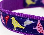 Colorful Birds Dog Collar on Purple