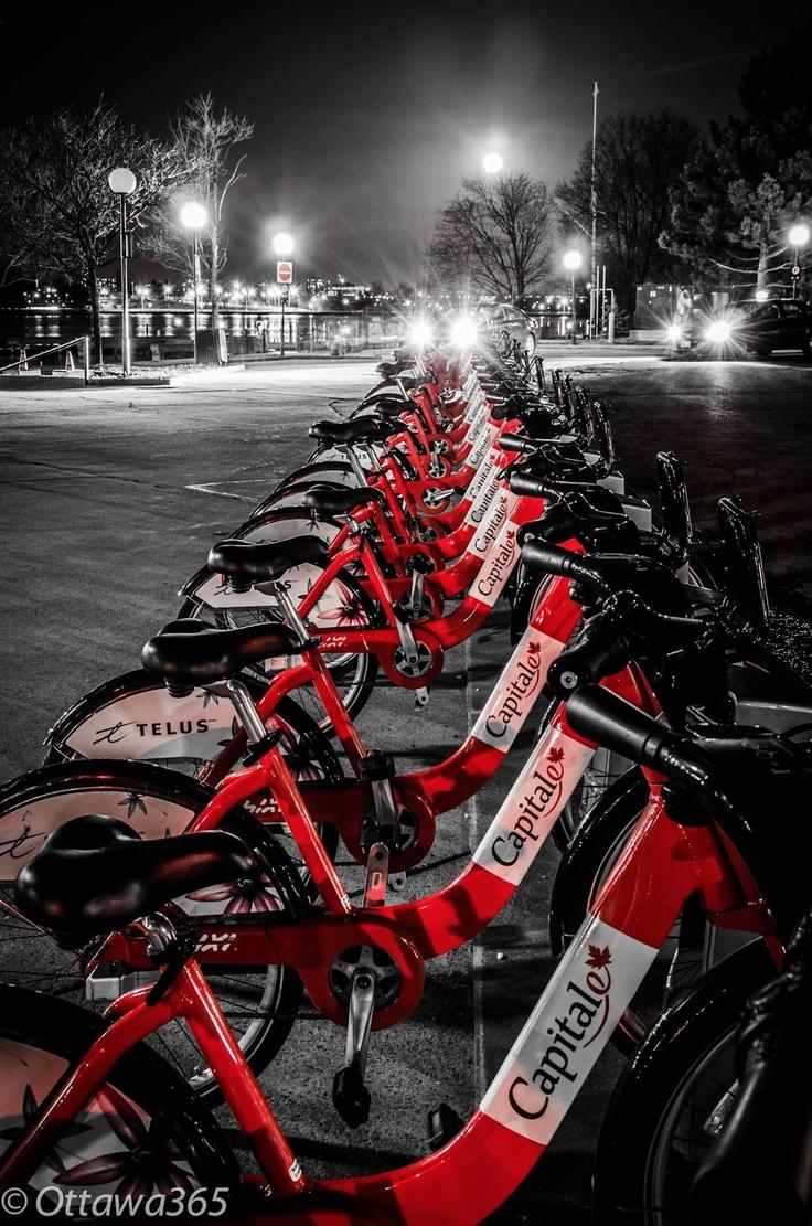 Ottawa seen 365 ways in 365 days: 294 - BIXI Bikes as seen at Dows Lake