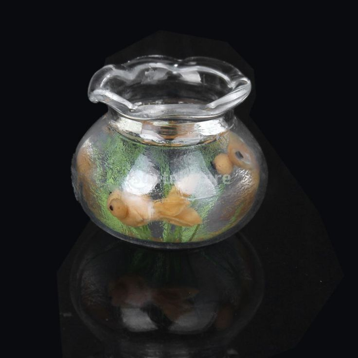1000 ideas about gold fish bowls on pinterest goldfish for Mini fish bowls