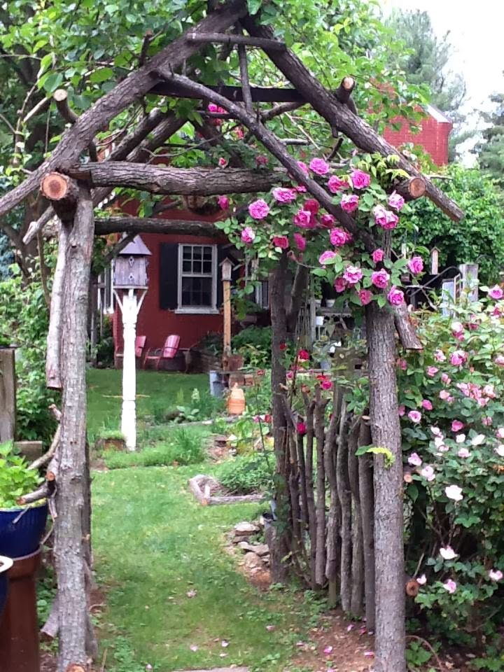 rustic arbor and fence