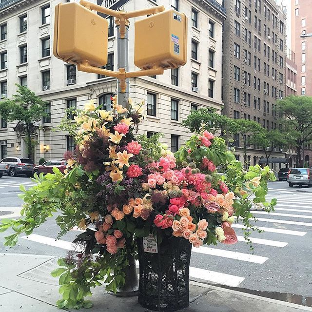 Thanks @manrepeller for waking up with us before the sunrise today!  Early bird gets the flash! Uptown girls head to 90th and Madison for a closer look. Find out what Lewis's fave flower is and more on Manrepeller now.  #LMDxNYC #lmdwashere #flowersfornewyork #lewismillerdesign #stylingnature #flowerflash 🐞
