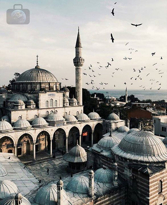 Hotels-live.com/pages/sejours-pas-chers - Beautiful shot in Istanbul Turkey! Photo by @nikolajthaning. Check out @travellingdestinations for more great travel photos.  If you want to be featured here DM or tag me in your photo.  #mytravelgoals #mtg #mytravelgram #mytripmyadventure #travels #travel #travelbug #travelgoals #travel #instaglobal #istanbul #turkey #istanbuldayasam #istanbullovers #birds Hotels-live.com via https://www.instagram.com/p/BCbQRBpIs4g/