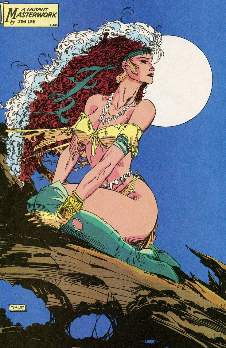 Savage Rogue by Jim Lee.  I love this pic, I drew a copy of it about 20 years ago.  I believe it was the first Marvel Swimsuit issue.