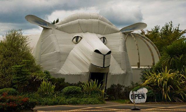 Le mouton en nouvelle z lande dr les insolites voire - Nouvelle ferrari gtclusso decouvrez ces photos ...