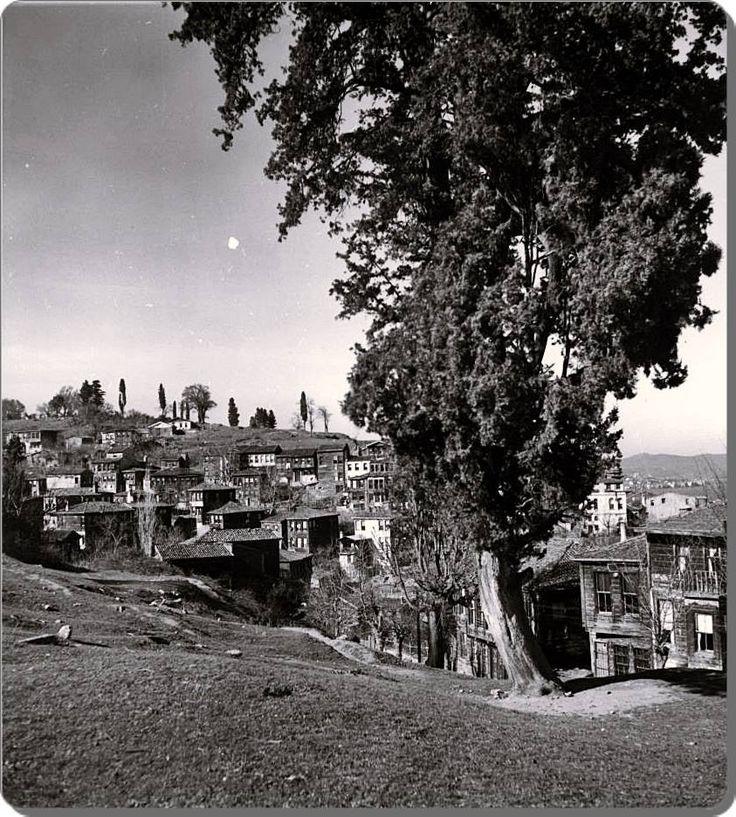 Ortaköy sırtları - 1936