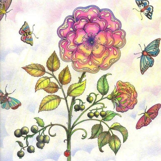 Eu Tambm Sou Uma Adulta Que Gosta De Colorir Livrodecolorir Secretgarden Garden PicturesColoring BooksColouringSecret