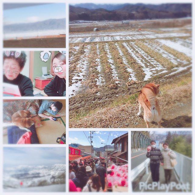 また遊びに行くからねー😭💓 帰りたくないなー🙄🙄🙄 #長野県 #おばあちゃん #雪降ってる #ダルマ市 #そば打ち体験 #スノボ #愛犬 #お散歩 #いとこに大接近 #ドキドキしたけど #噛まなかった #諏訪湖  #海渡り #満喫しました #長野に住みたい #笑