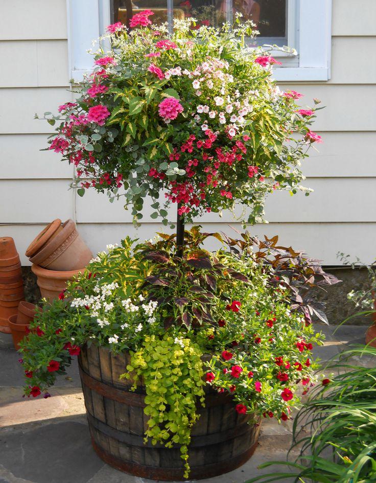 Basket Column / Whiskey Barrel Planter...Plants shown; Diascia, Nemesia, Verbena, Euphorbia-Diamond Frost, Coleus and Potato Vine