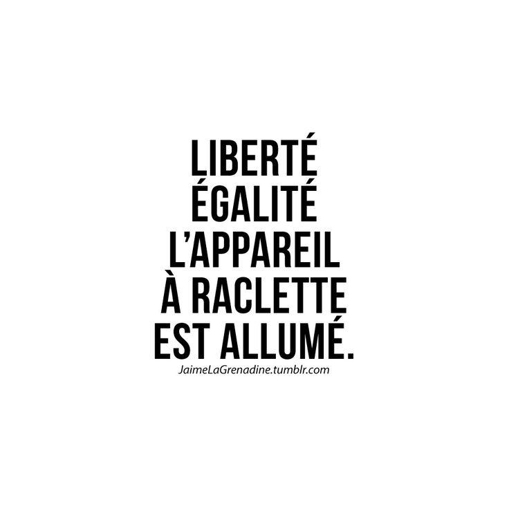 Liberté Égalité L'appareil à raclette est allumé - #JaimeLaGrenadine #citation #punchline #raclette #liberteegalitefraternite