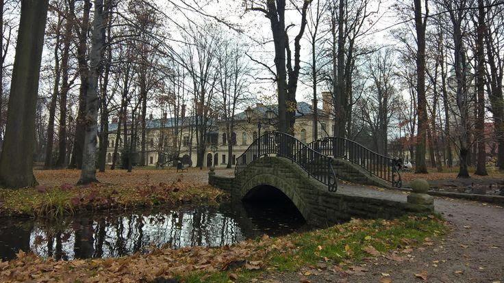 old park, autumn, palace, Żywiec, Poland