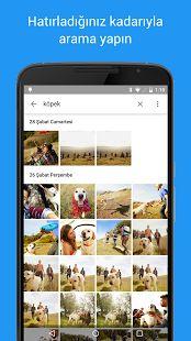 Google Fotoğraflar- ekran görüntüsü küçük resmi