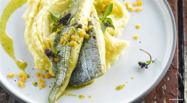 Filetti di sarago con purea di patate e burro al curry