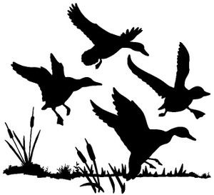 Ducks and decals on pinterest for Duck hunting mural