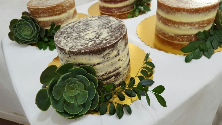 Suculent  botanical cake