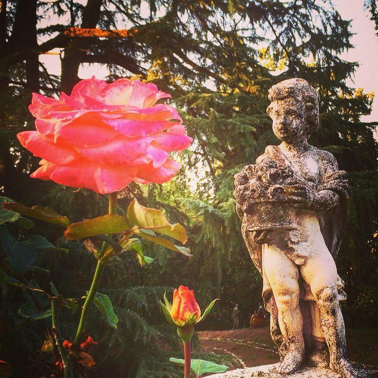 Happy birthday to me #nature #italianholidays #sky #happybirthday #summer #beach #beautiful #pretty #sunset #sunrise #blue #flowers #night #tree #twilight #clouds #beauty #light #cloudporn #photooftheday #love #green #skylovers #dusk #piedmont #day #red #paradise #mothernature