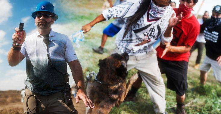 Police Do Nothing While Armed Mercenaries Attack Native American Dakota Pipeline Protesters With Dogs and Pepper Spray