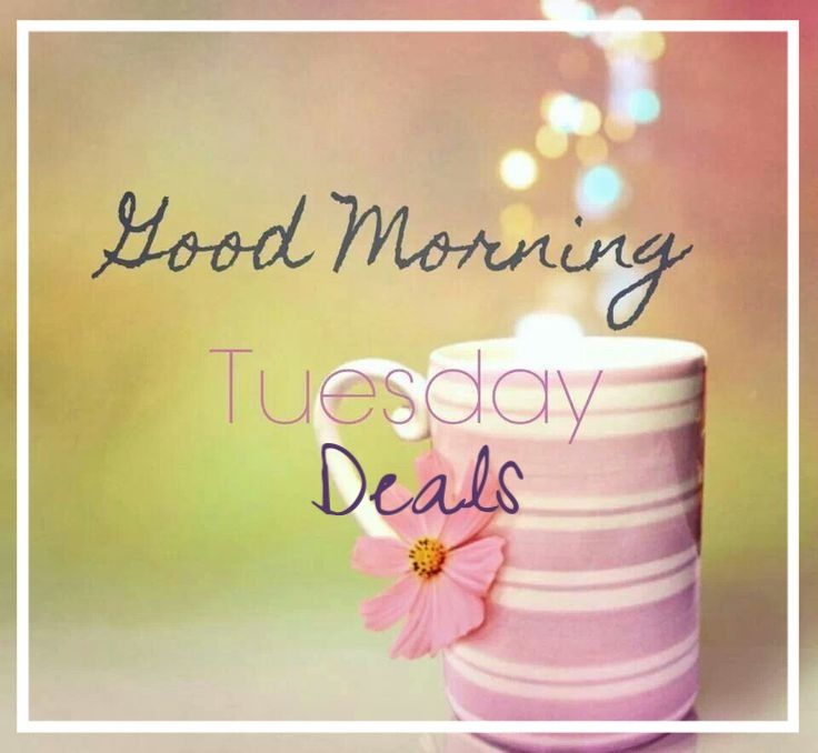 Tuesday Deals  #beauty #makeup #skincare #fashion #bloggers #deals #style #July #makeupartist #Wedding