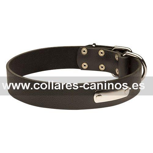 Collar de cuero con placa para identificación 30 mm de ancho - C456 (30 mm)