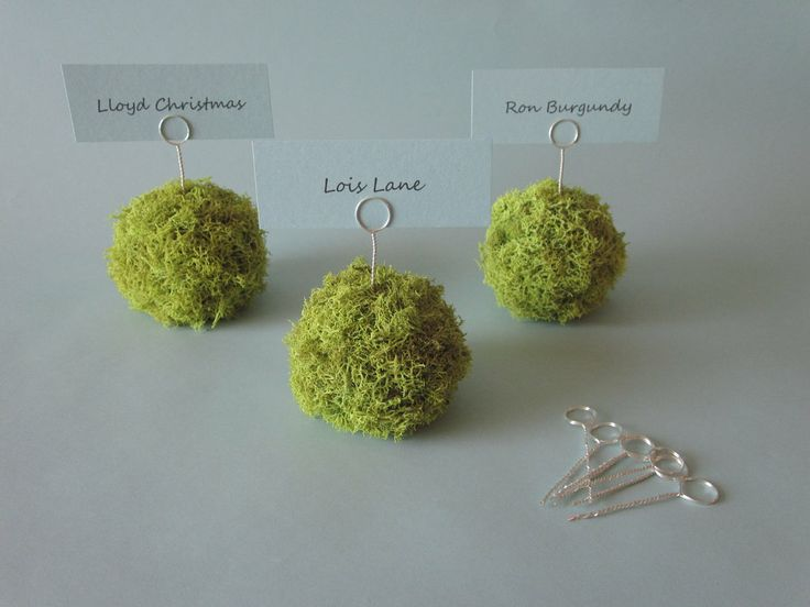 Moss Place Card Holder - pretty!