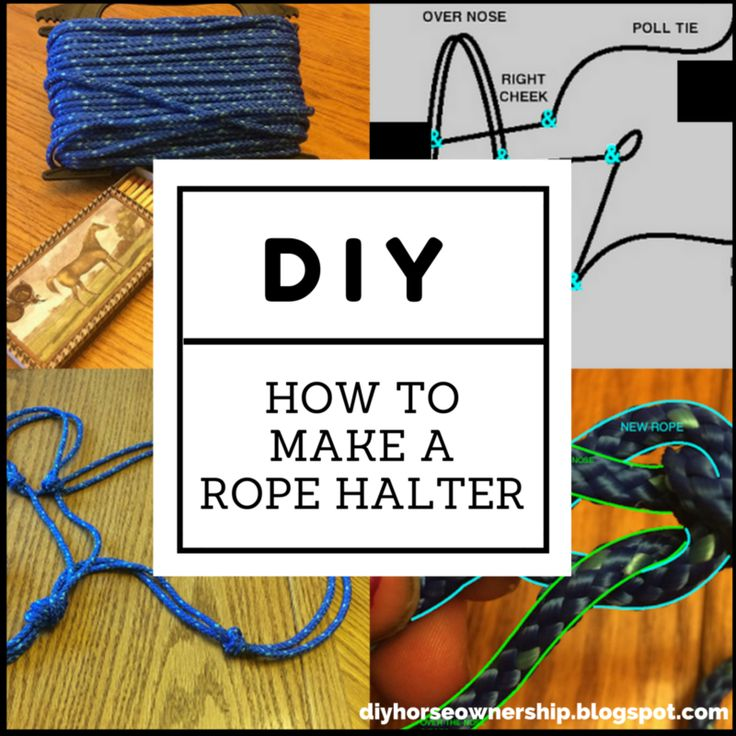 Do It Yourself Horse Ownership -- How to make a rope halter for horses