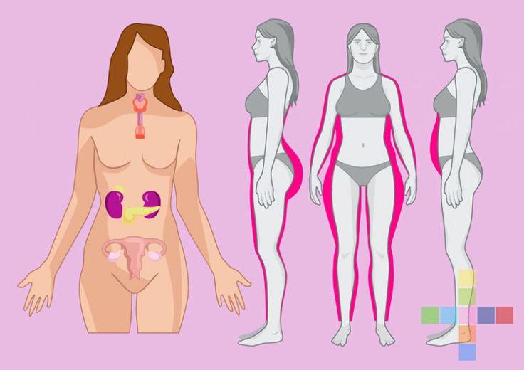 Как питанием сбалансировать главные гормоны