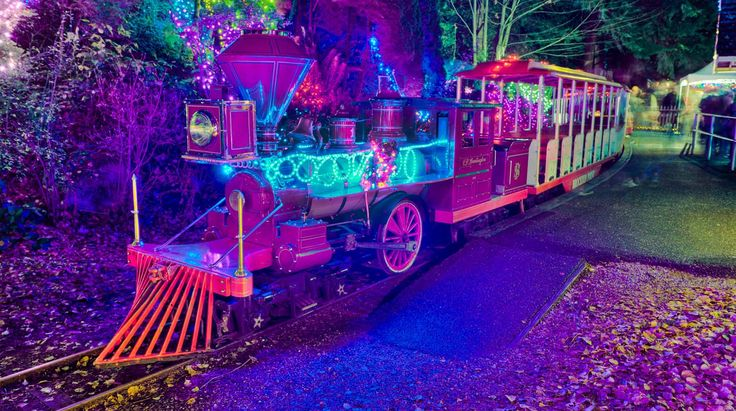 Bright Nights and Christmas Train in Stanley Park | $4 Donation to the Burn Fund and $11 for the Train Ride