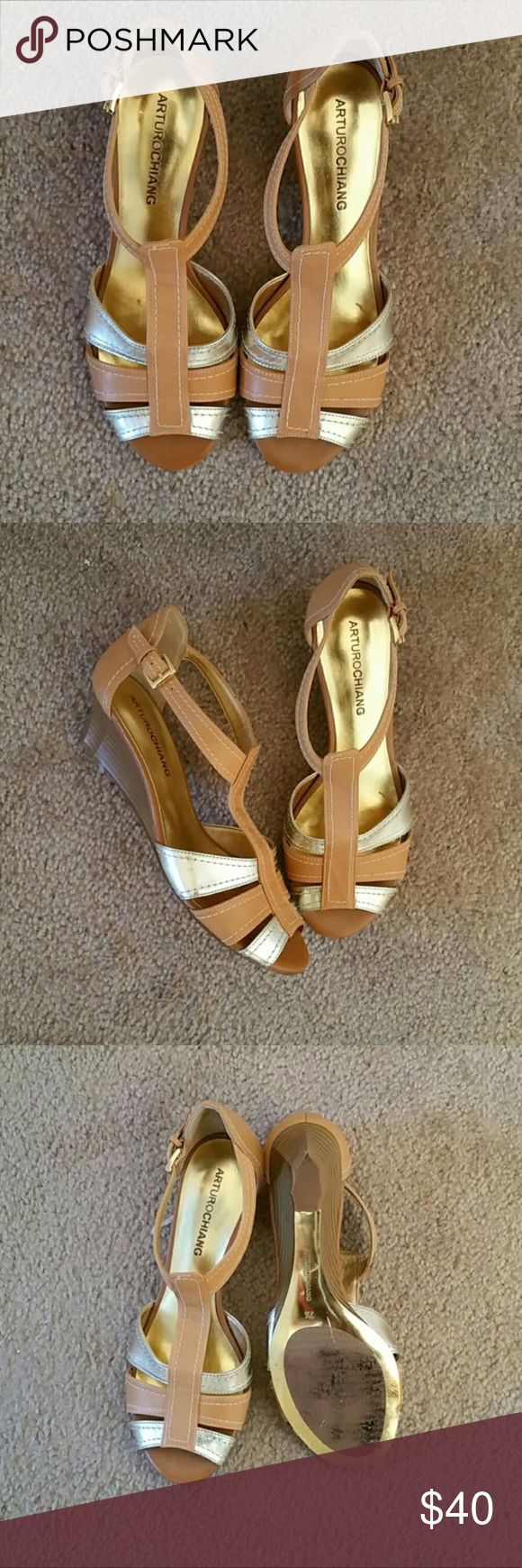 Silver and Tan Wedge Shoe Gently Worn. NO TRADES. Arturo Chiang Shoes Sandals