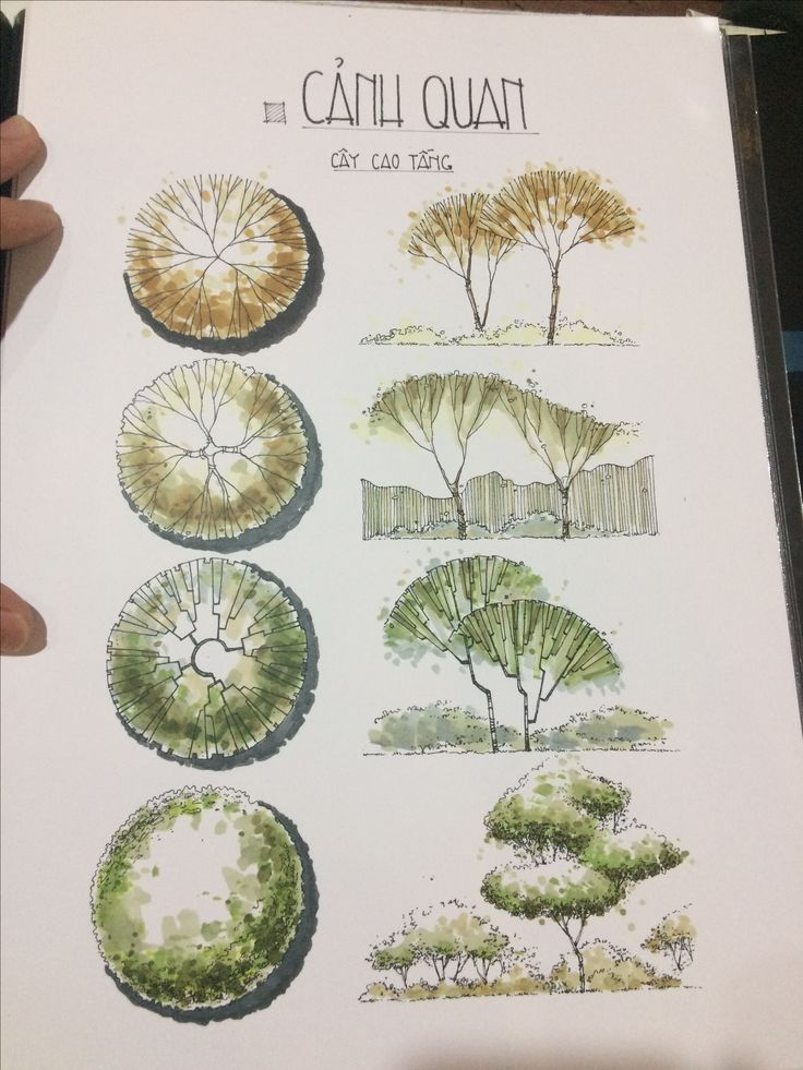 Best 25 landscape sketch ideas on pinterest for Paisajismo urbano