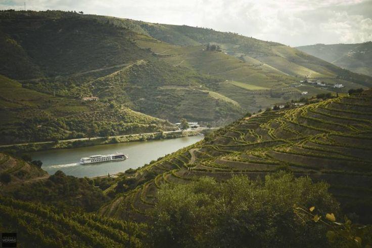 Além de fazer um vinho de primeira, a Quinta Nova Nossa Senhora do Carmo tem um hotel com 11 suítes luxuosas