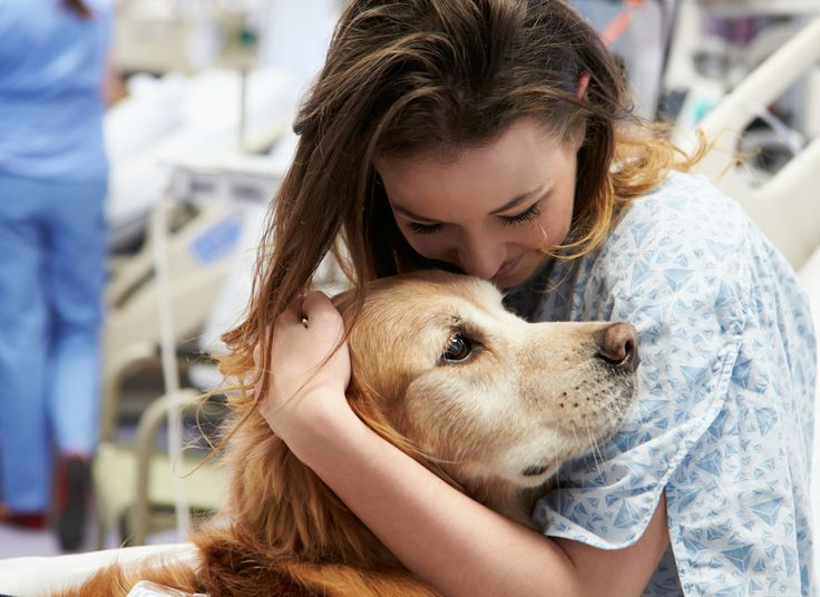 How Therapy Dogs Help People Connect To The World Around Them