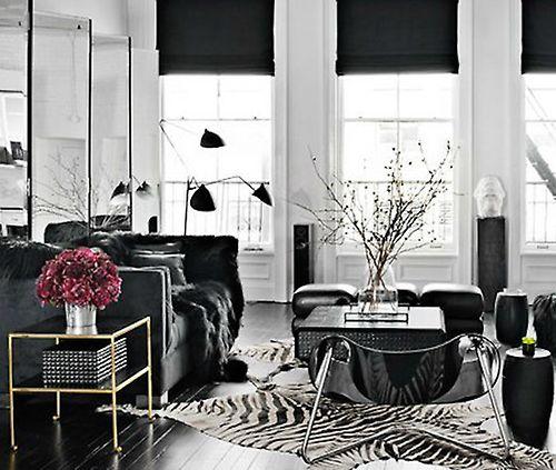zebra rugs to black and white interiors.