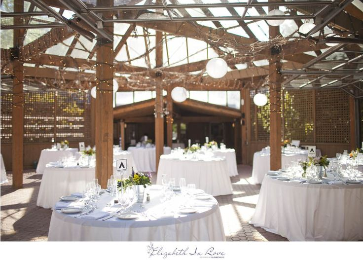 26 best kortright images on pinterest conservation conservation marion dave kortright centre vaughn wedding elizabeth in love junglespirit Gallery