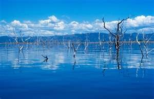 Lake Kariba in Rhodesia - the site of Operation Noah - when animals were rescued from flooding when Kariba Dam was built.