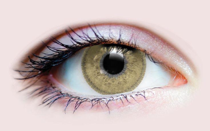 Charm Chestnut – Primal Contact Lenses