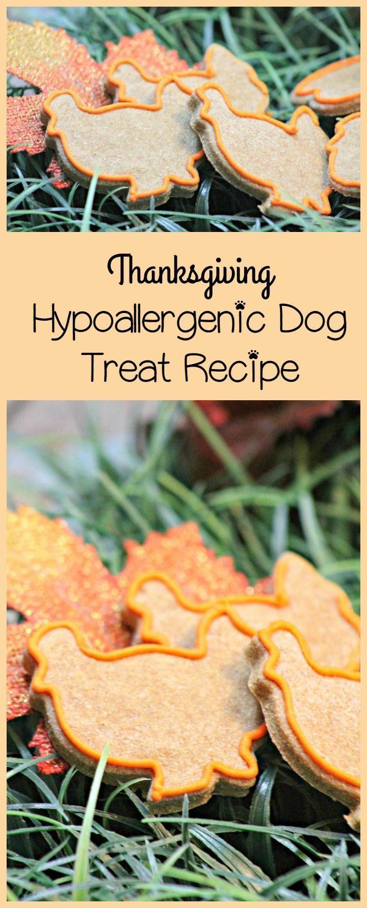 1178 best Recipes DOG Biscuits Snacks images on Pinterest Dog