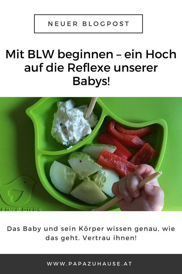 Beikost einführen schön und gut, doch wann können wir tatsächlich mit BLW beginnen? Diese Frage beantworte ich dir im zweiten Teil meiner BLW-Serie! Lass es dir schmecken, aber spucks bitte nicht gleich wieder aus.  #blw #babyledweaning #beikost #breifrei #beikosteinführen