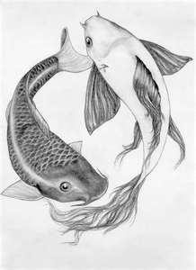 mine and aarons tattoo!...(one day)Tattoo Ideas, Koi Fish Tattoo, Pisces Fish Tattoo, Koy Fish Tattoo, Fish Koi, Koi Fish Art, Pencil Drawing, Koi Fish Drawing, Aaron Tattoo On