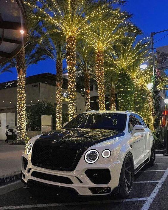 Cars Bentley Suv Luxury Cars: Bentley Suv, Luxury Cars